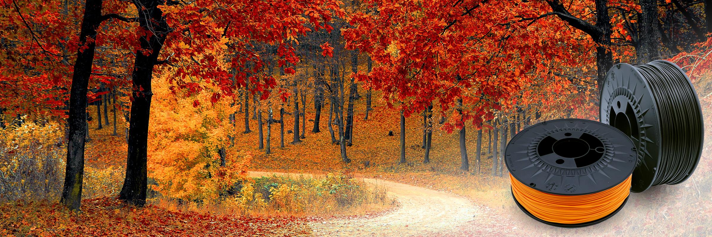 Herbstbild im 3DFilstore